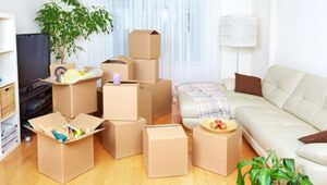 Packers and Movers Chanda Nagar Hyderabad